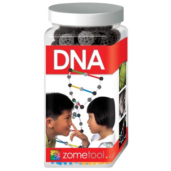 Tudományos modellező készlet  - DNA - DNS molekula - 0